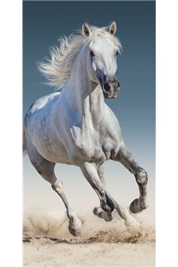 Osuška Kůň 03