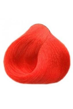 BLACK Sintesis Barva na vlasy 100ml - korálově červená 6-60