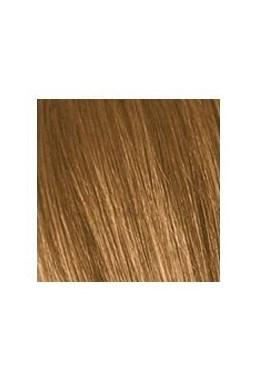 SCHWARZKOPF Igora Royal Absolutes 60ml - střední blond přírodní zlatá 7-50